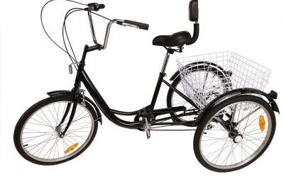 Top 10 Best Adult Tricycle in 2019 Reviews